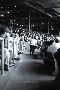 tiger-stadium-1999-BJL-11